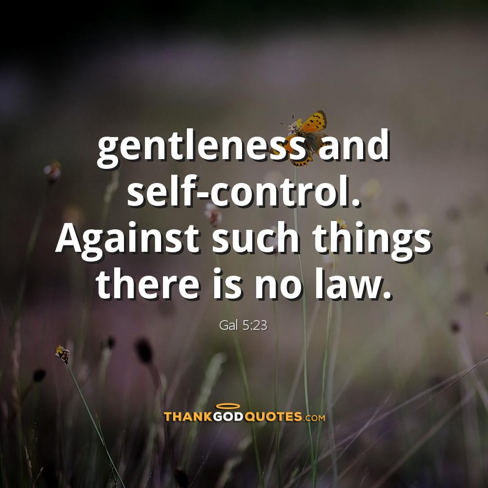 Galatians 5:23