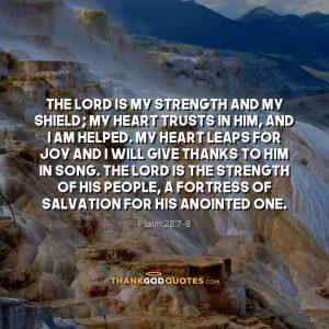 Psalm 28:7-8