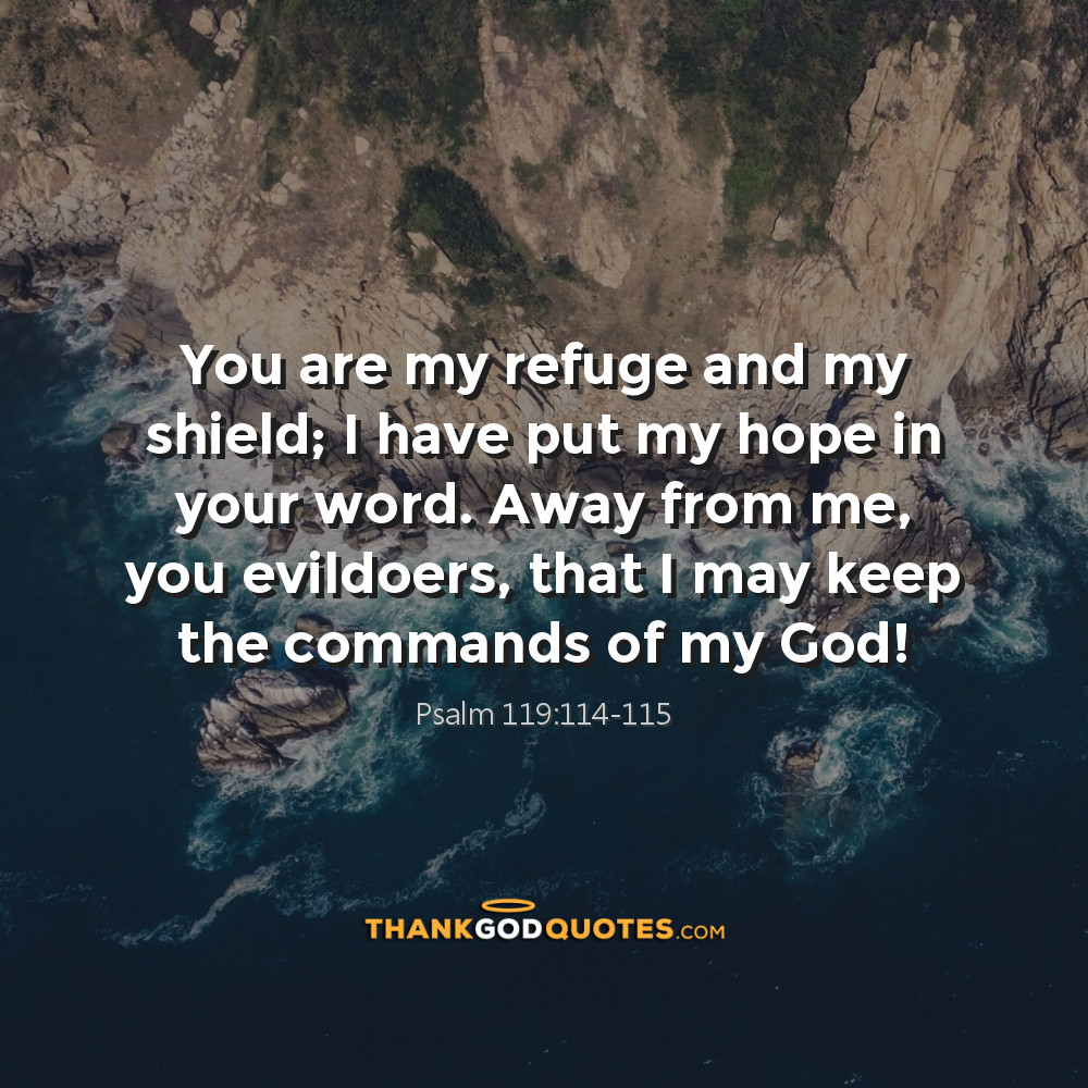 Psalm 119:114-115