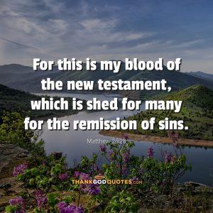 Matthew 26:28