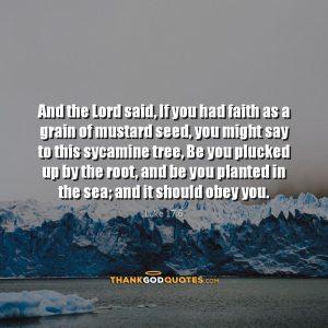 Luke 17:6